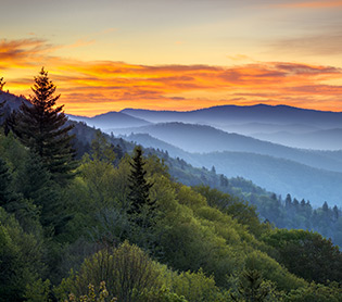 G.O. Great Smoky Mountains